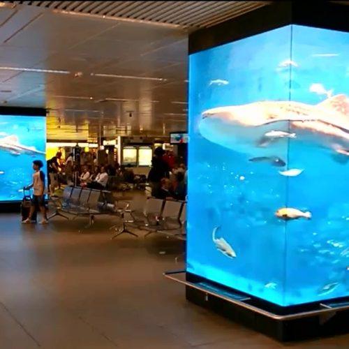 Colonne-Digitali-Aeroporto-Fiumicino